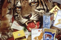This undated handout image shows Chinese medicines, containing tiger and rhino parts, confiscated by the US Fish and Wildlife Service at Los Angeles International Airport. (Photo: Reuters)