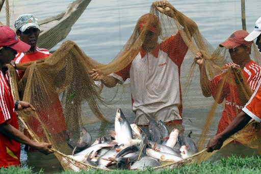 Irrawaddy villagers protest over fishing rights- DVB