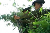 File photo of Tatmadaw troops firing a mortar. (Photo courtesy of Jade Land)