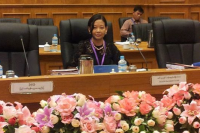 Yu Yu Khine attending a parliamentary briefing in Naypyidaw, March 2015. (PHOTO: Yu Yu Khine Facebook)