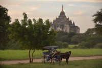 A horse and carriage rest in front of a pagoda in Bagan. (PHOTO: Colin Hinshelwood/DVB)