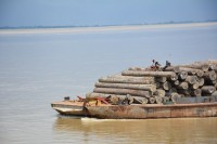 Transporting teakwood logs on the Irrawaddy river, October 2015. (PHOTO: Colin Hinshelwood/ DVB)