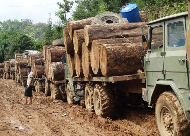 FILE PHOTO: Log trucks in Kachin State wait to cross the border into China in April 2015. (Photo: EIA)