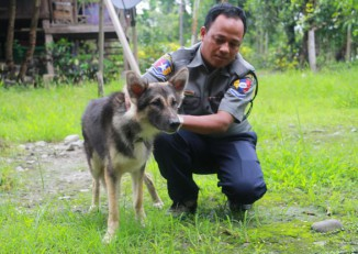 A police officer poses with Brownie, the 10-month-old Alsatian that has joined the police force of Sagaing Division's Kale District.  (PHOTO: DVB)