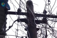 A bird's nest of power lines envelope a power pole in Rangoon. (Photo: DVB)