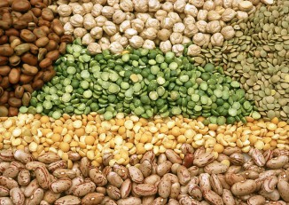 A display of different pulses and legume seeds. (Photo: CSIRO / Wikimedia)