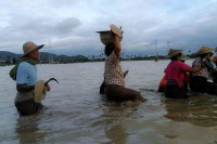 Salingyi locals head for higher ground on 13 July 2016 after the Chindwin River burst its banks. (PHOTO: DVB)
