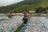 File photo of women drying fish on a beach in Burma. (Photo: Land Resources Group / Facebook)